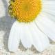 employeurs-recrutement-granby-cowansville-st-hyacinthe-7